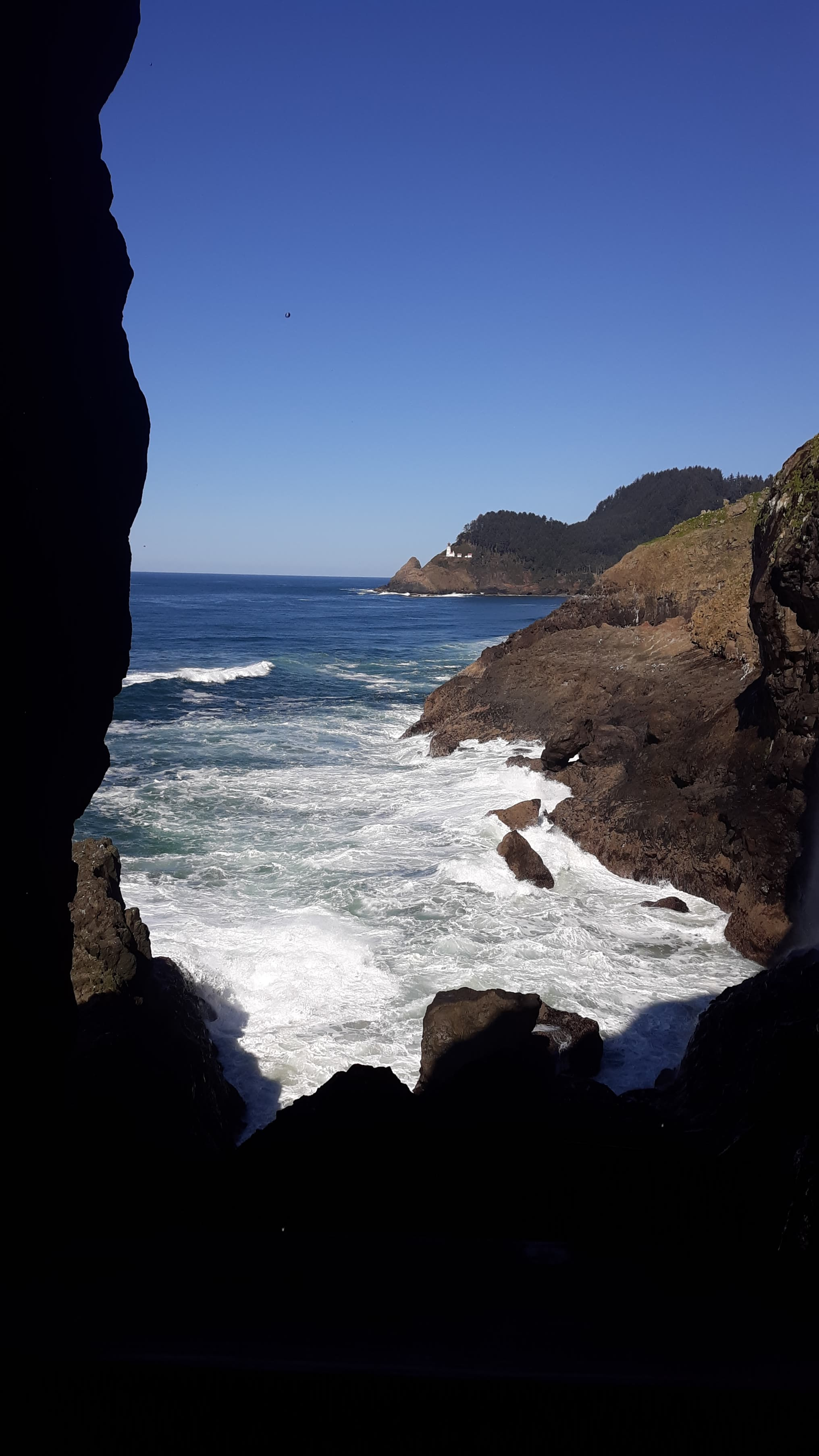View From Sea Lion Cave